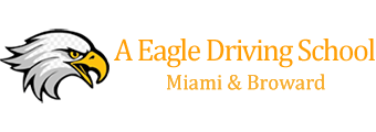 A EAGLE DRIVING SCHOOL